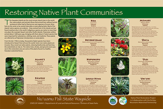 pali-lookout-native-plant-sign-and-mahalos
